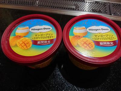 haagen-dazs-mango-pudding.jpg