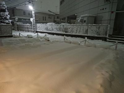 snow-20180122-2.jpg