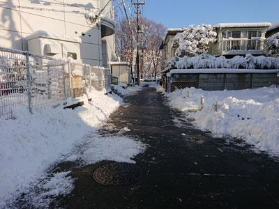 snow-20180123-4.jpg