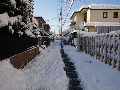 snow-20180123-5.jpg