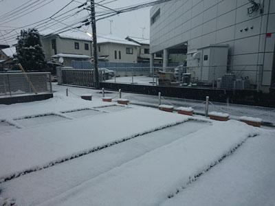 snow-20180202-0.jpg