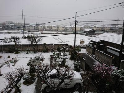 spring-snow-20180321.jpg