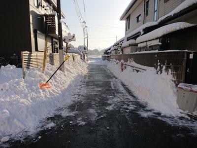 snow-20180123-3.jpg